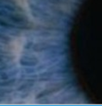 EyeballCloseUp
