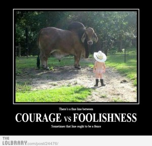 courage-vs-foolishness-24476