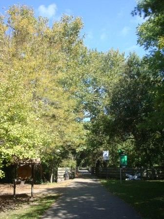 Loveland Trail 1