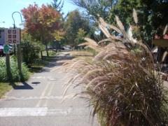 Loveland Trail 3