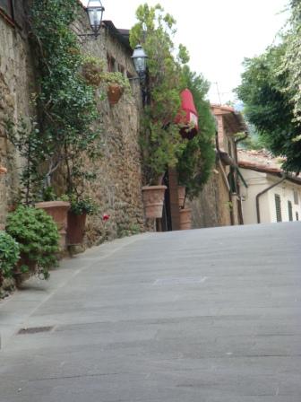 VinciStreetUp